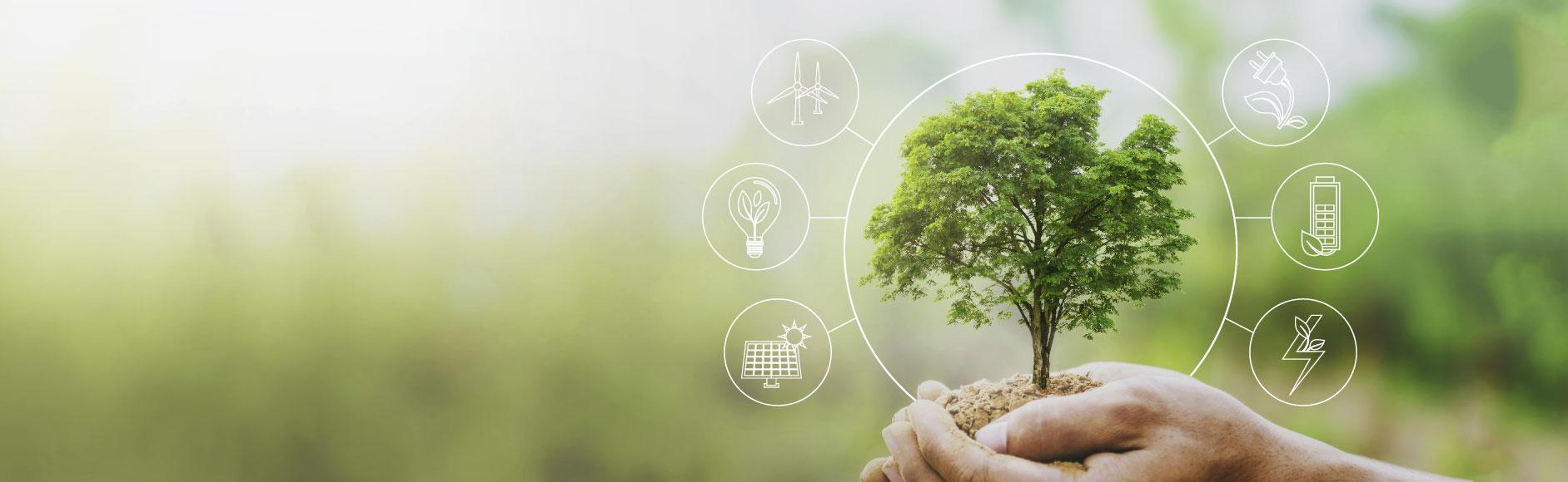 cuidado com o meio ambiente com a agir sustentavel